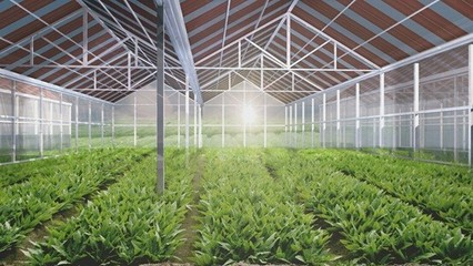 农业光伏温室大棚是太阳能光伏发电,智能温控,现代高科技种植为